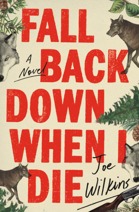 Fall Back Down When I Die by Joe Wilkins (Little, Brown & Company)