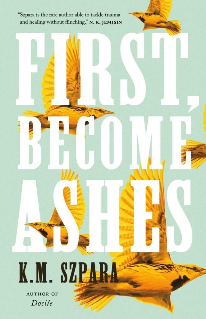 First Become Ashes - Zach Cihlar