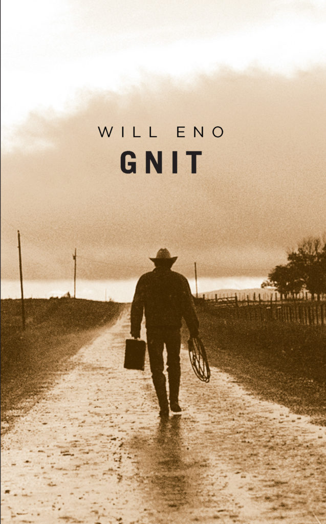 Gnit front cover - Carla Cain-Walther (3)