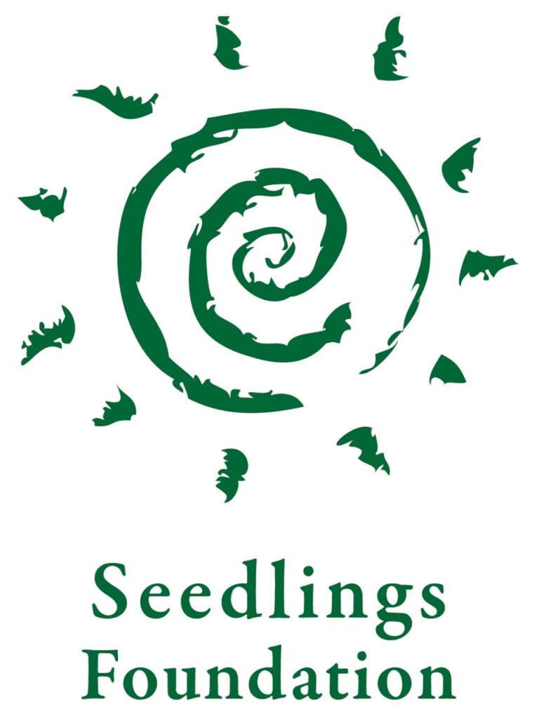 Seedlings-Foundation