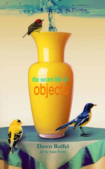 The Secret Life of Objects Raffel