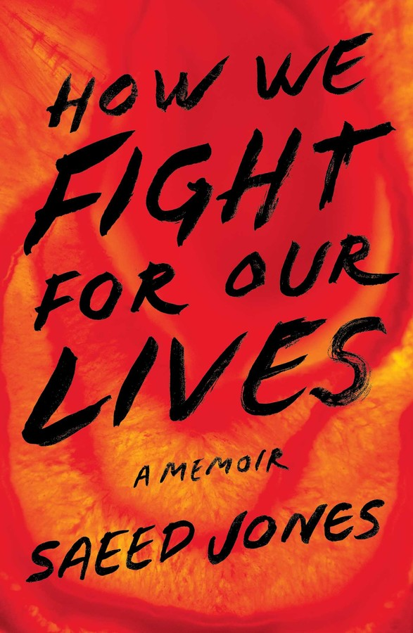 how-we-fight-for-our-lives-9781501132735_xlg
