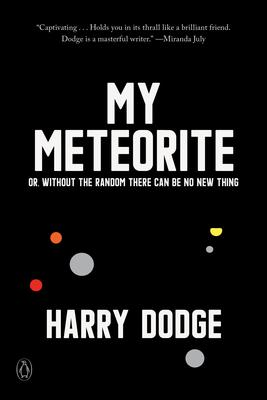 My Meteorite harry dodge