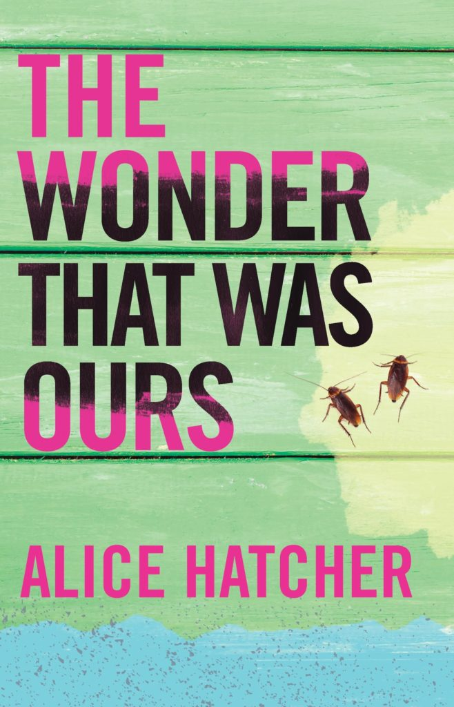 The Wonder That Was Ours by Alice Hatcher (Dzanc Books)